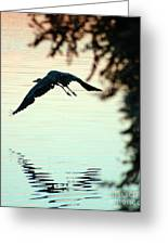Heron At Dusk Greeting Card
