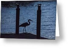 Heron At Dusk Greeting Card