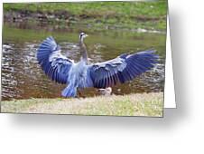 Heron Bank Landing Greeting Card
