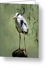 Heron Egret Bird Greeting Card