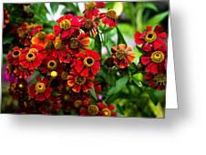 Heron Hill Garden Greeting Card