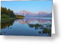 Heron On Jackson Lake Greeting Card