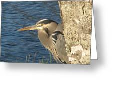Heron On My Doorstep Greeting Card