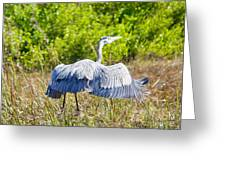Heron On The Rise Greeting Card