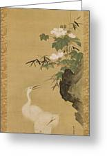 Herons And Cotton Roses Greeting Card