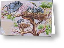 Herons At Nests Greeting Card