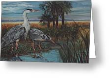 Herons Greeting Card
