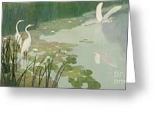 Herons In Summer Greeting Card