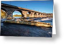 Hexham Bridge And Fish Pass Greeting Card