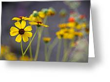 Hi, My Name Is Daisy... Greeting Card