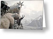Hi We Are The Mountain Goats Greeting Card