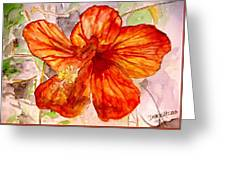 Hibiscus 2 Greeting Card
