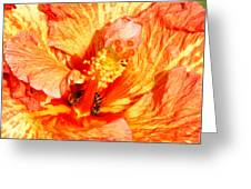 Hibiscus And Bees Greeting Card