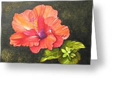 Hibiscus Dance In The Sun Greeting Card