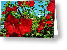 Hibiscus In Naptown Greeting Card