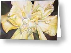 Hibiscus Jaune Greeting Card