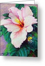 Hibiscus Light Greeting Card