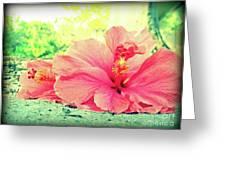 Hibiscus Love Greeting Card