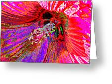 Hibiscus Macro Abstract Greeting Card