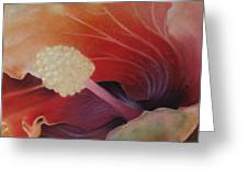 Hibiscus Macro Greeting Card