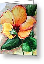 Hibiscus  Sunny Greeting Card