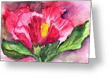 Hibiscus Unfolding Greeting Card