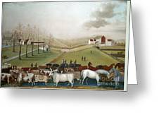 Hicks: Cornell Farm, 1848 Greeting Card