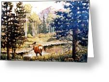 Hidden Babies     Doe And Fawns Greeting Card