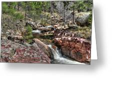 Hidden Beauty On The Trail Greeting Card