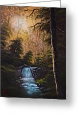 Hidden Brook Greeting Card by C Steele