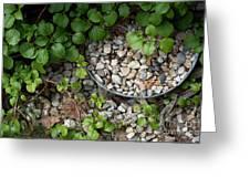 Hidden Bucket Of Rocks Greeting Card