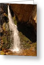 Hidden Falls Greeting Card