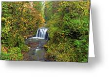 Hidden Falls In Autumn Greeting Card