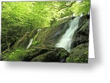 Hidden Falls - Shenandoah National Park. Greeting Card