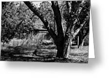 Hidden History Black And White Greeting Card