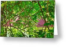Hidden In The Garden Greeting Card