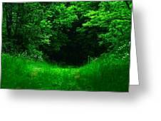 Hidden Meadow Greeting Card