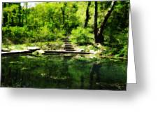 Hidden Pond At Schuylkill Valley Nature Center Greeting Card