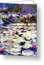 Hidden Pond Lotusland Greeting Card