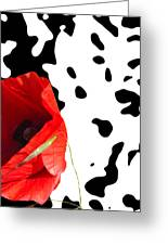 Hidden Poppy Greeting Card