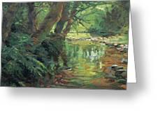 Hidden Stream Greeting Card