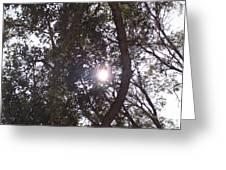 Hidden Sun Greeting Card
