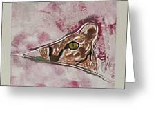 Hide And Seek Greeting Card