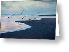 Hide Tide Greeting Card