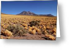 High Altitude Puna Grasslands And Miniques Volcano Chile Greeting Card