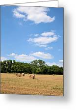 High As The Sky Greeting Card