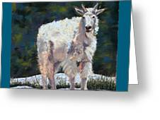 High Country Friend Greeting Card