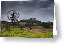 High Country Winter Greeting Card