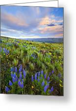 High Desert Spring Greeting Card by Mike  Dawson