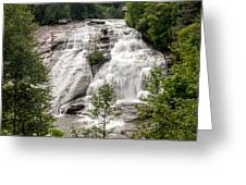 High Falls At Dupont Forest Greeting Card